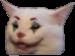 :jokercat: